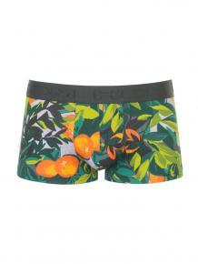 HOM Trunk - Tangerine