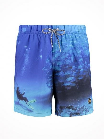 Shiwi Zwemshort Diver multi color