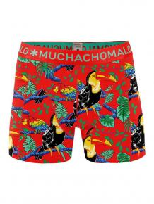 MuchachoMalo Short Costa