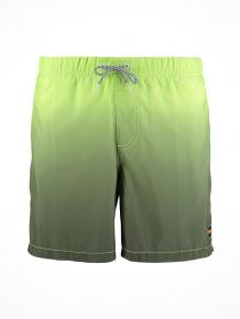 Shiwi Swim Shorts Gradient