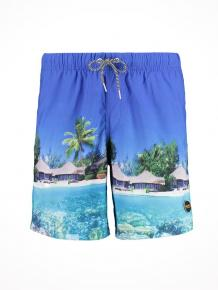 Shiwi Swim Shorts Beach